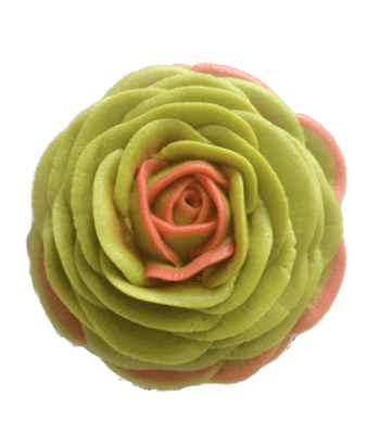 succulents_buttercream_cupcake